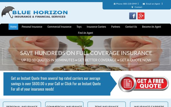 BlueHorizonInsuranceandFinancialServices
