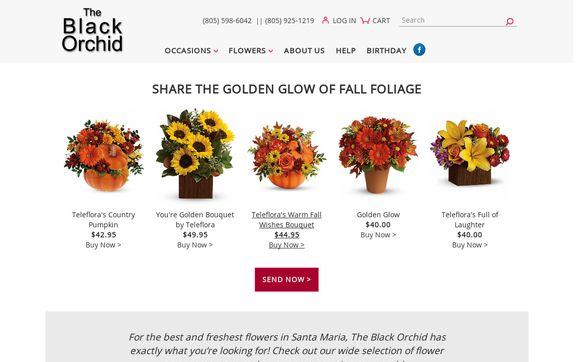 Blackorchidflowershop.com