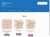 DenverProcessServer