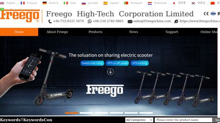FreegoChina Scooters