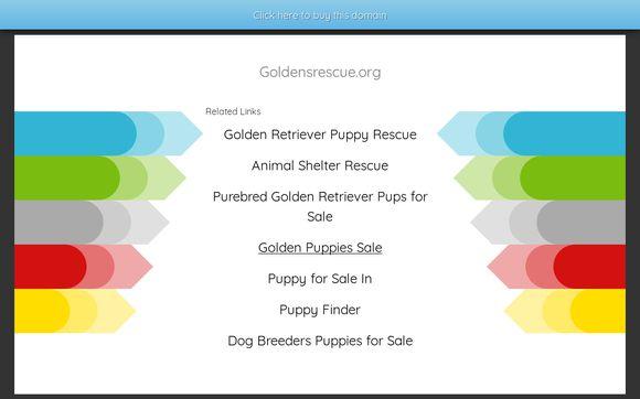 Golden S Rescue