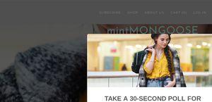 Mintmongoose.com
