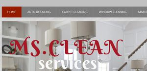 Mscleanservices.org