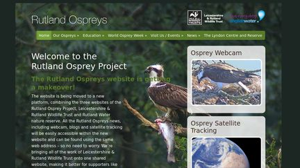 Rutland Ospreys