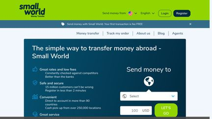 Small World Financial Services Group