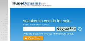 Sneakersin.com