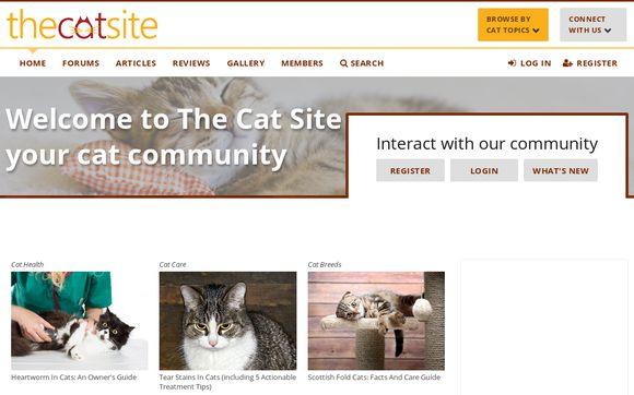 TheCatSite