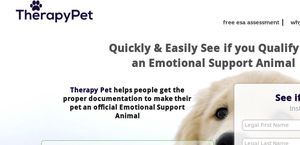 Therapy Pet