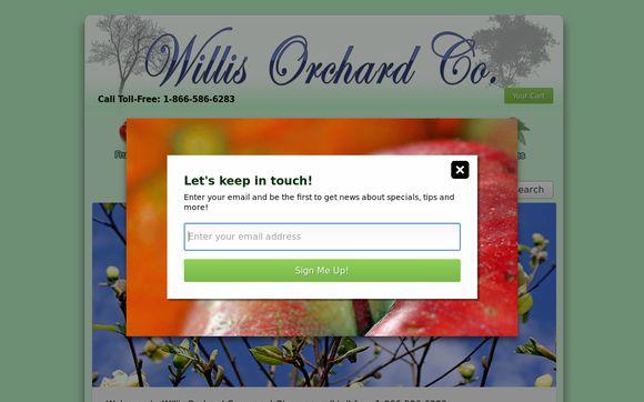 Willis Orchard Co