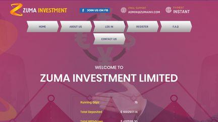 Zumainv.com